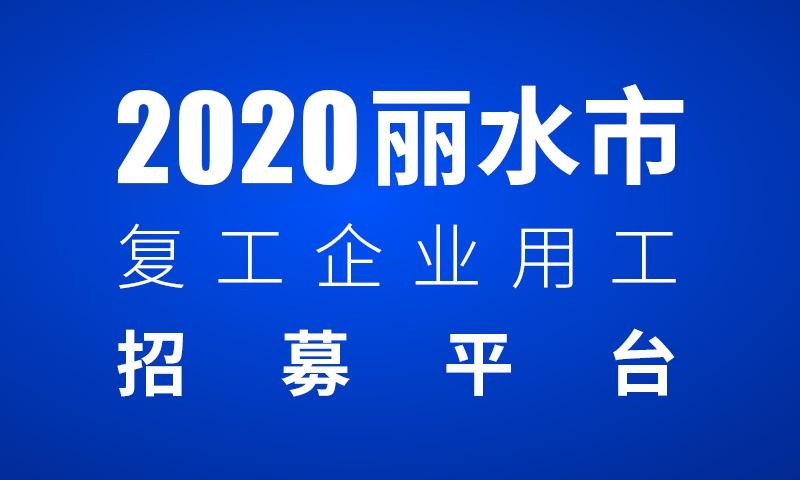 2020丽水市复工企业用工招募平台(市本级)